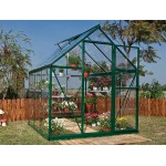 Harmony Clear Glazing Greenhouse Green 6x6