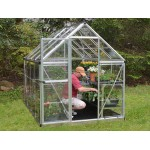 Harmony Clear Glazing Greenhouse Silver 6x8