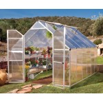 Essence TwinWall Glazing Greenhouse Silver 8x12