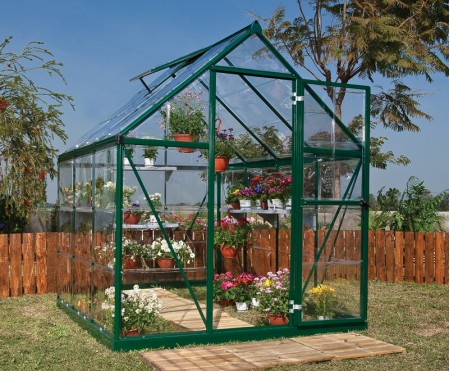 Harmony Clear Glazing Green 6x8